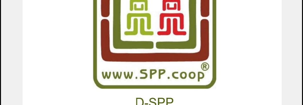 dspp-montado